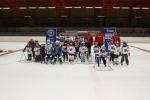 pojď hrát hokej 2